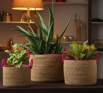 Multi-Utility Jute Made Bountiful Baskets With Fuchsia Border In Set Of Three