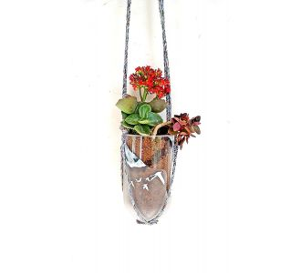 Glass Reusable Hanging Planter Clear