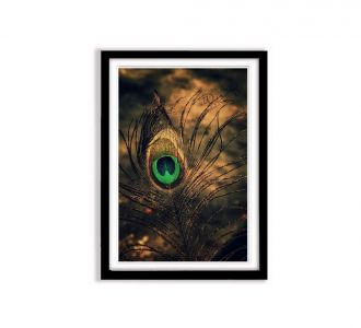 Picturesque Peacock Feather Of Lord Krishna Photo Frame Made Of Mdf Wood In Multi Colours Wall Decor