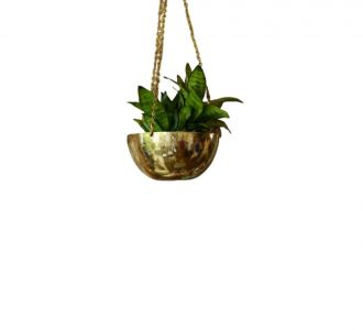 Hanging Brass Handcrafted Decoration Planter For Main Door And Living Room Decoration