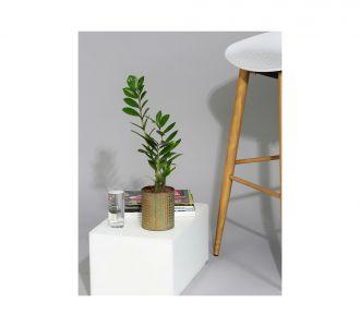 Ceramic Planter With U Shaped Unique Metal Stand