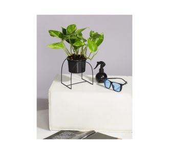Ceramic Flora Planter With Cup Shaped Metal Stand