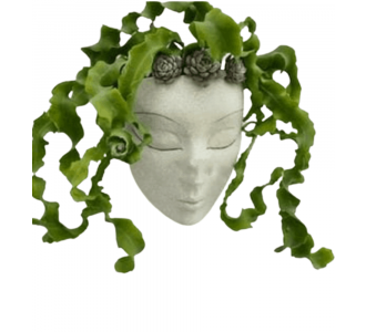 Beautiful Lady Face Planter In White