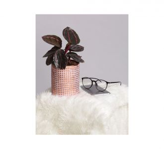 Classy Ceramic Planter With U Shaped Metal Stand